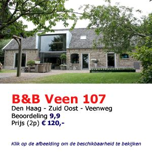 bed and breakfast den haag veen 107